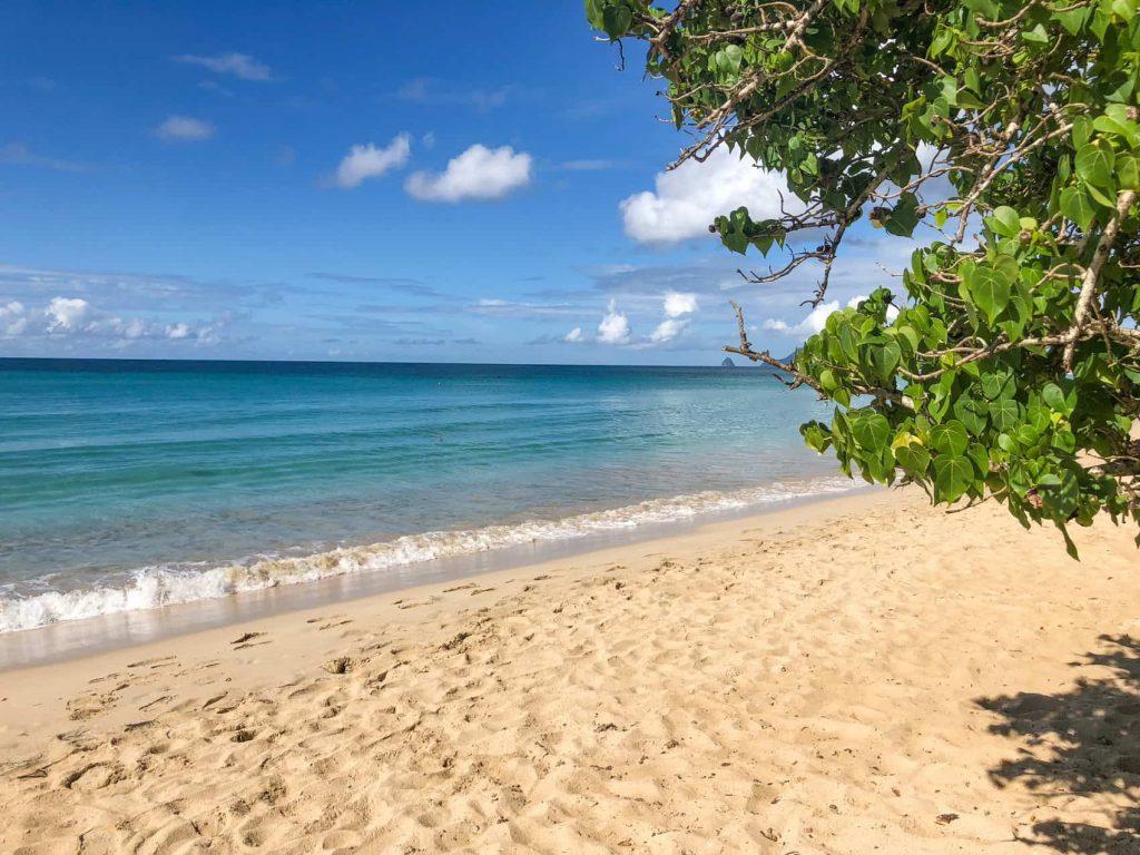 white sand beach in martinique