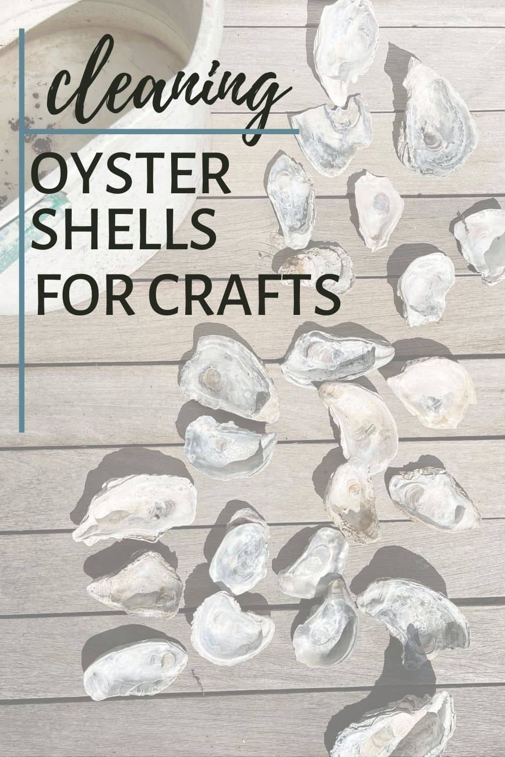 How to Clean Oyster Shells For Crafts