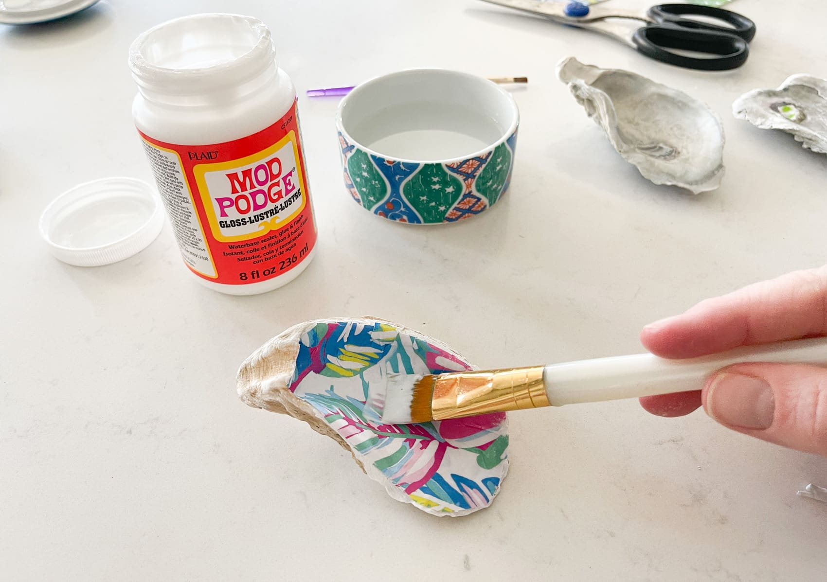seal the paper to the oyster shell with mod podge